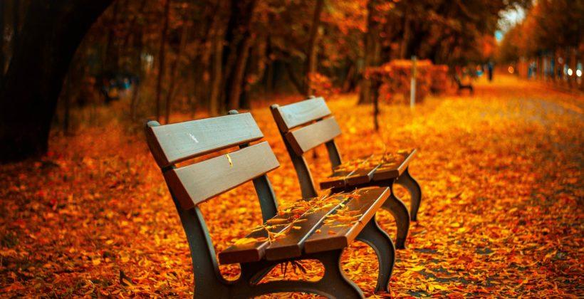 Jesień, płuca ijelito grube – jak być zdrowym otejporze roku